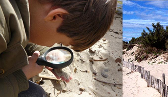 Découverte des dunes